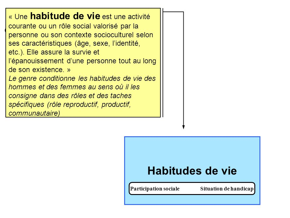Participation sociale Situation de handicap