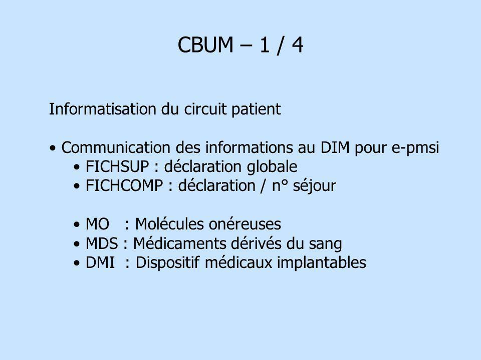 CBUM – 1 / 4 Informatisation du circuit patient