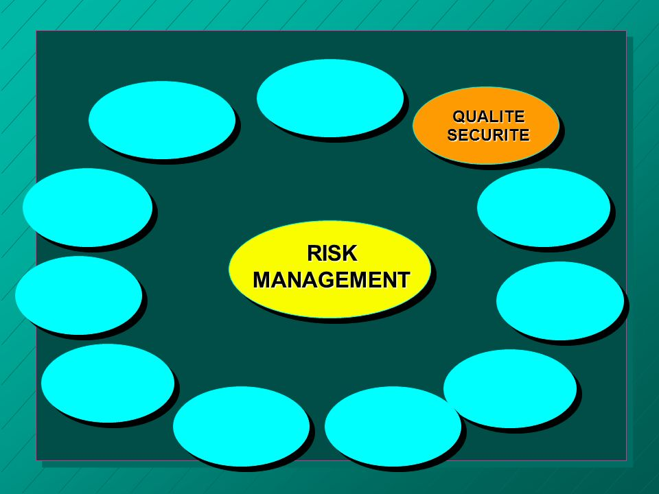 RISK MANAGEMENT QUALITE SECURITE