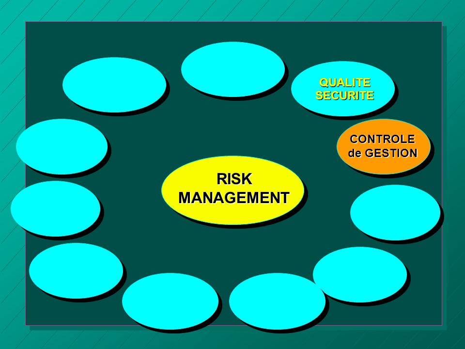 QUALITE SECURITE CONTROLE de GESTION RISK MANAGEMENT