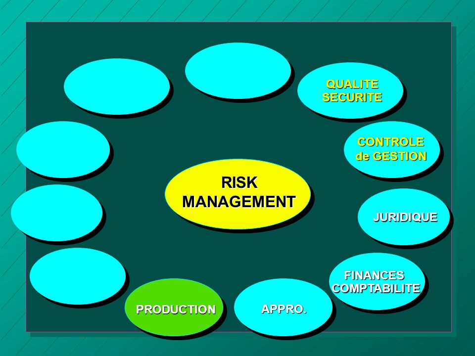 RISK MANAGEMENT QUALITE SECURITE CONTROLE de GESTION JURIDIQUE