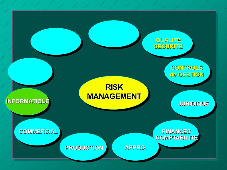 RISK MANAGEMENT QUALITE SECURITE CONTROLE de GESTION INFORMATIQUE