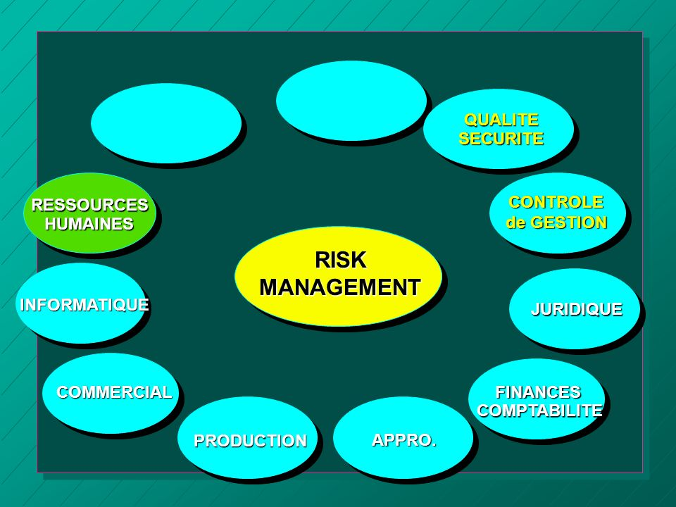 RISK MANAGEMENT QUALITE SECURITE RESSOURCES HUMAINES CONTROLE