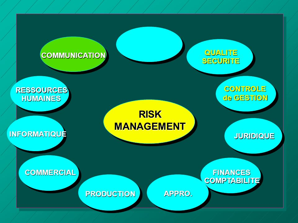 RISK MANAGEMENT QUALITE SECURITE COMMUNICATION RESSOURCES HUMAINES