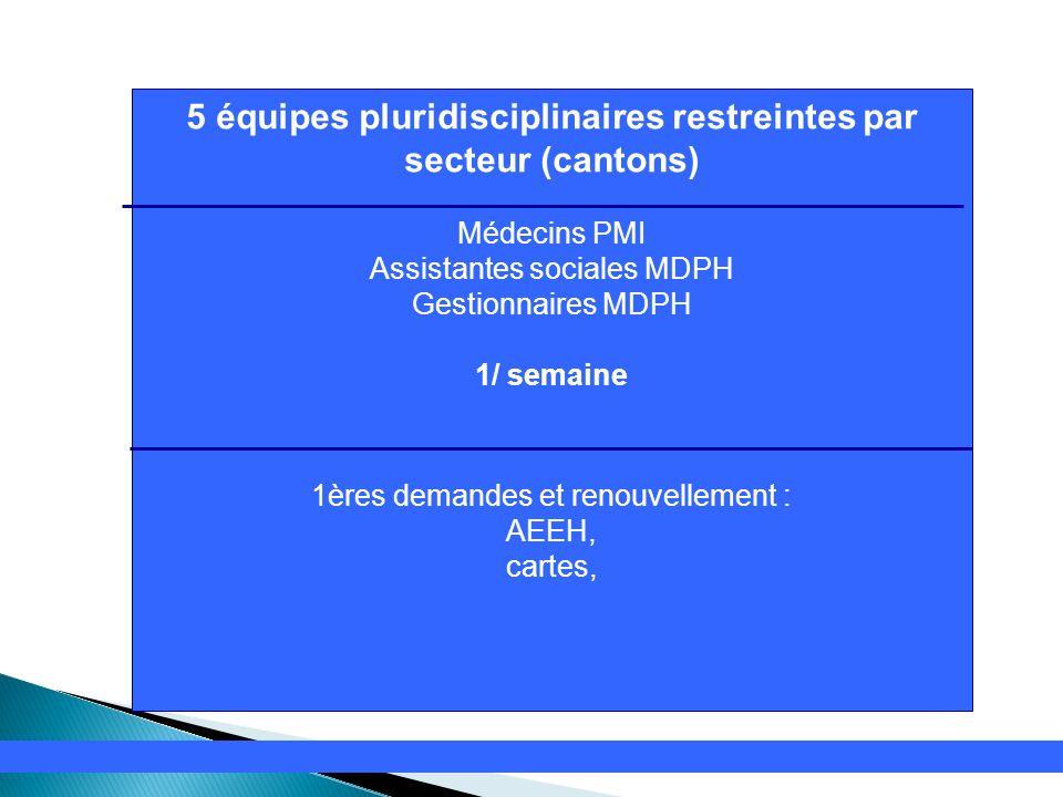 5 équipes pluridisciplinaires restreintes par secteur (cantons)