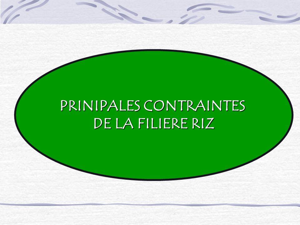 PRINIPALES CONTRAINTES