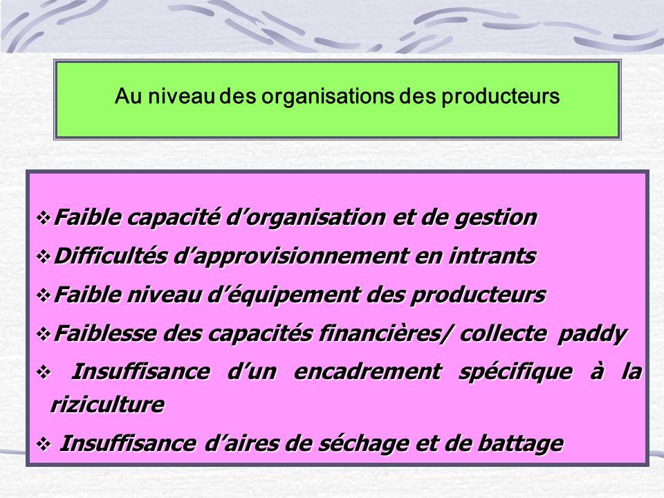 Au niveau des organisations des producteurs