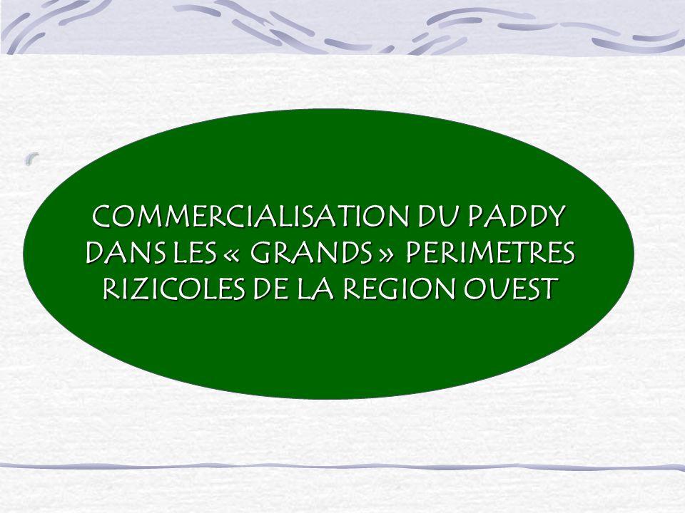 COMMERCIALISATION DU PADDY DANS LES « GRANDS » PERIMETRES