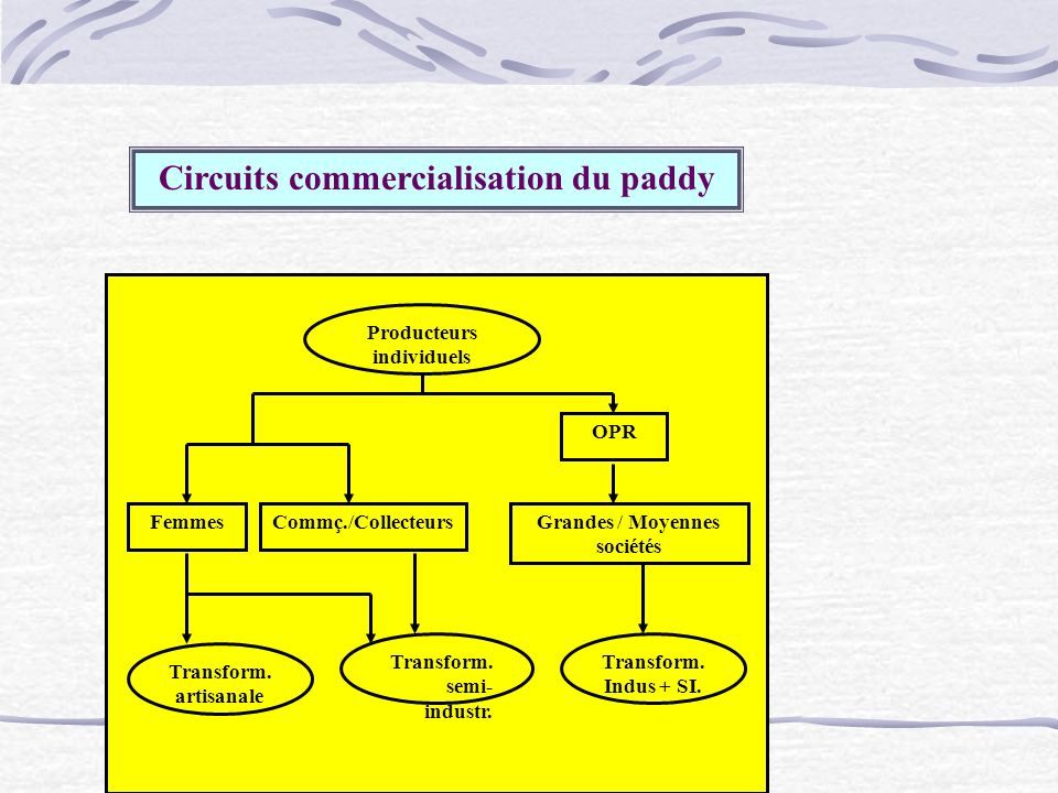 Circuits commercialisation du paddy