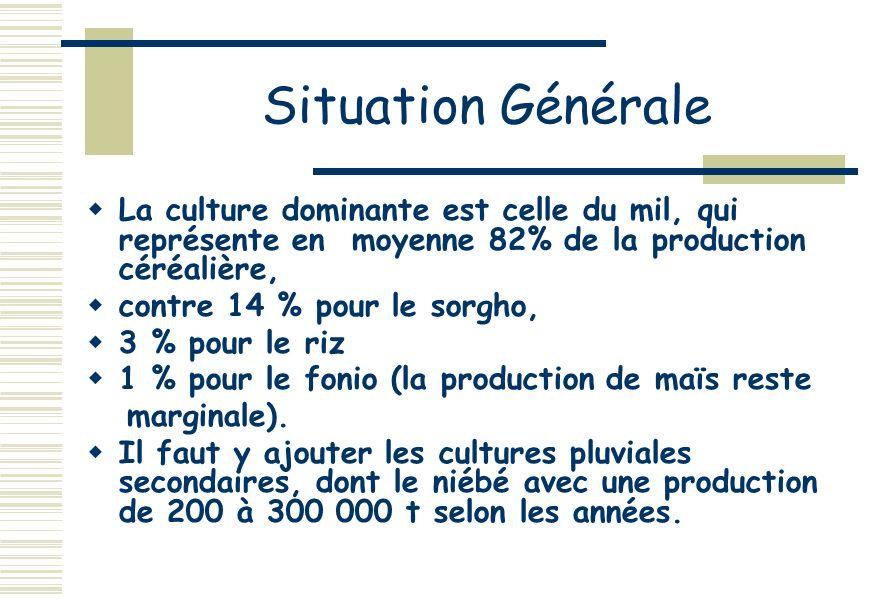 Situation GénéraleLa culture dominante est celle du mil, qui représente en moyenne 82% de la production céréalière,