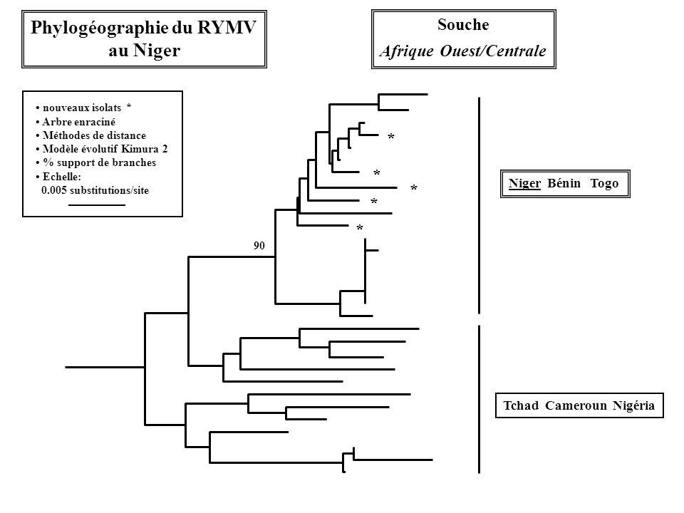 Phylogéographie du RYMV Afrique Ouest/Centrale