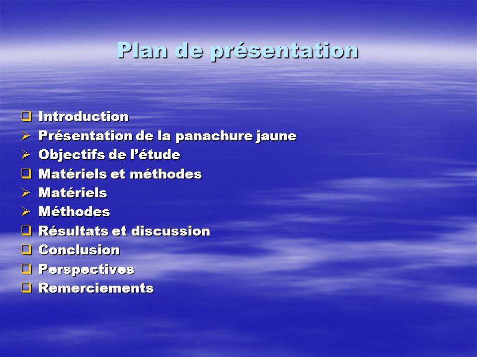 Plan de présentation Introduction Présentation de la panachure jaune