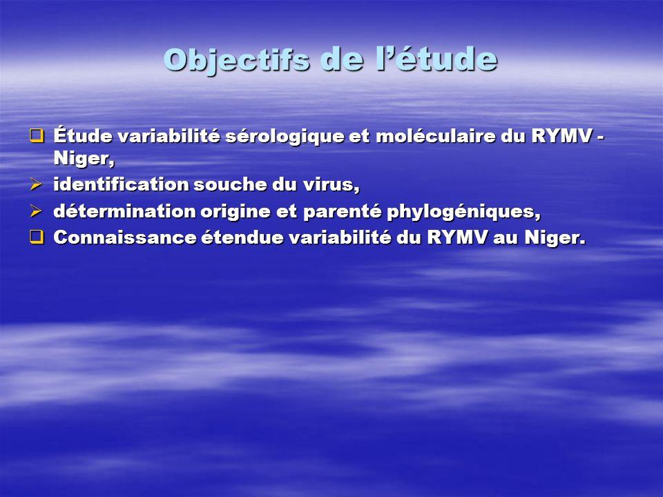 Objectifs de l'étude Étude variabilité sérologique et moléculaire du RYMV - Niger, identification souche du virus,