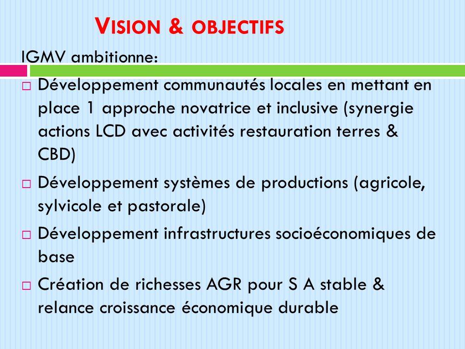 Vision & objectifs IGMV ambitionne: