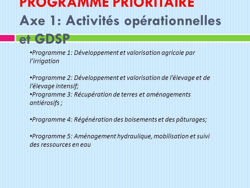 PROGRAMME PRIORITAIRE Axe 1: Activités opérationnelles et GDSP