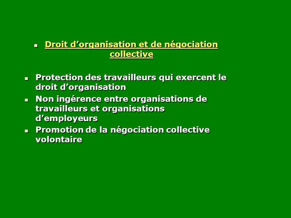 Droit d'organisation et de négociation collective