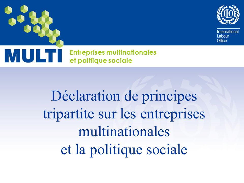 Entreprises multinationales et politique sociale