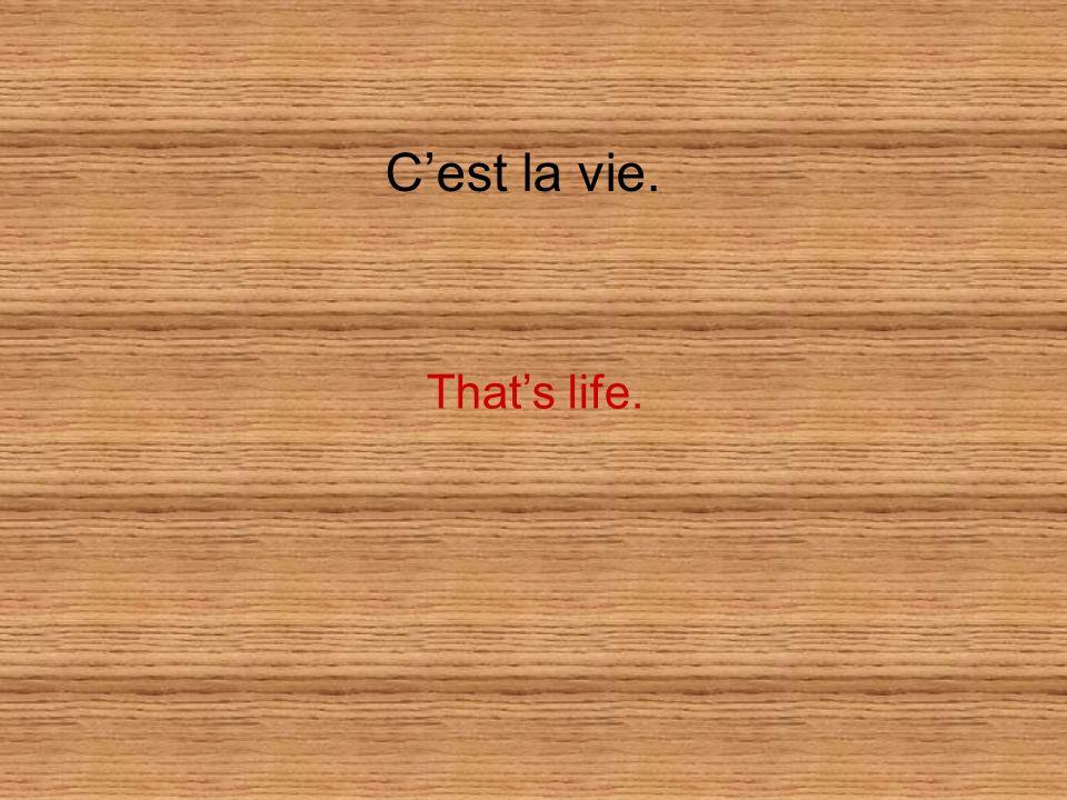 C'est la vie. That's life.