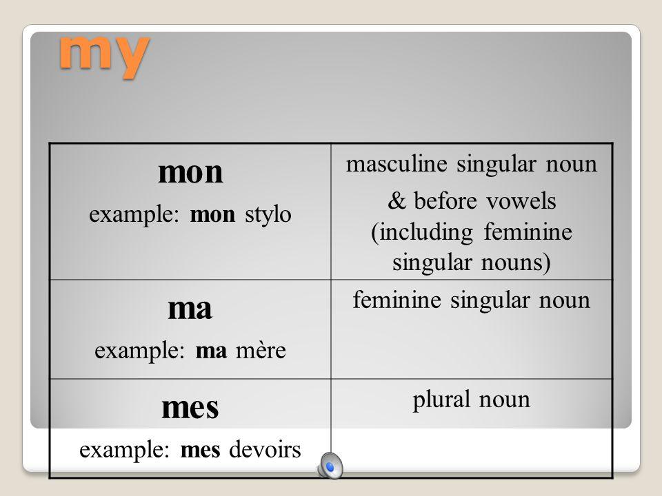 my mon ma mes masculine singular noun