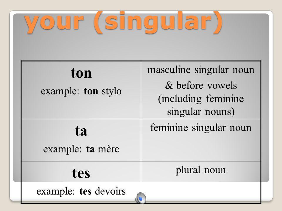 your (singular) ton ta tes masculine singular noun