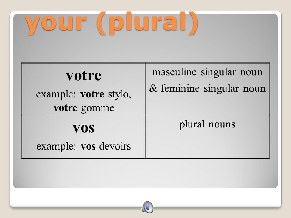 your (plural) votre vos masculine singular noun
