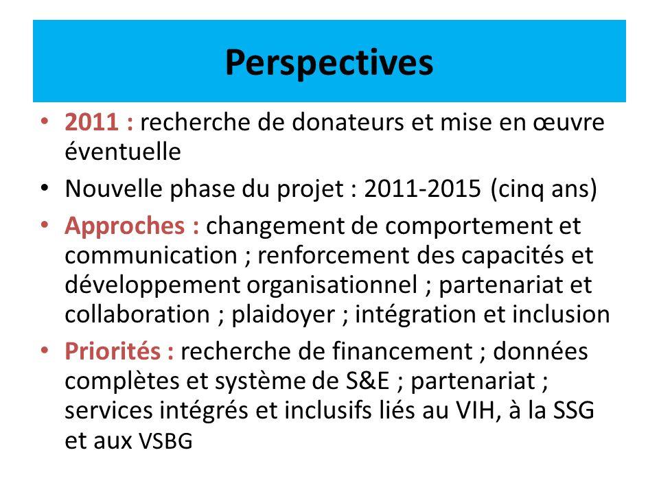 Perspectives 2011 : recherche de donateurs et mise en œuvre éventuelle