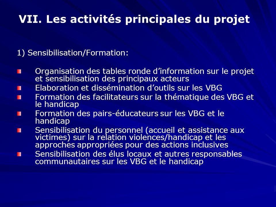 VII. Les activités principales du projet