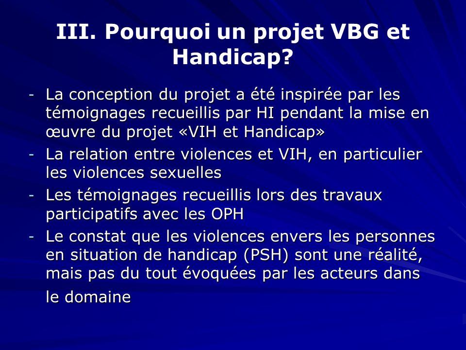 III. Pourquoi un projet VBG et Handicap