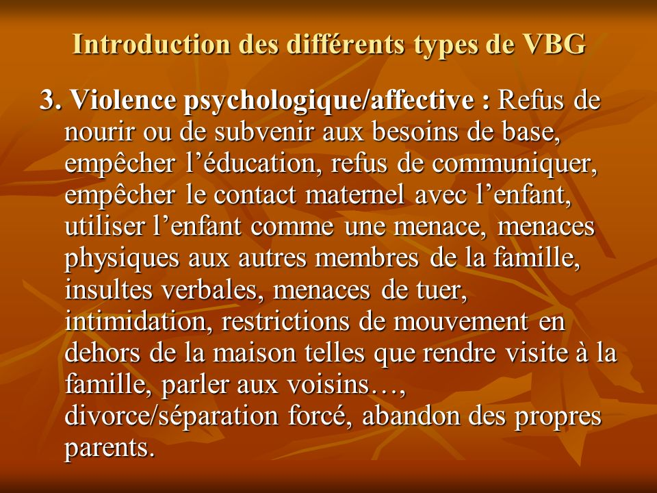 Introduction des différents types de VBG