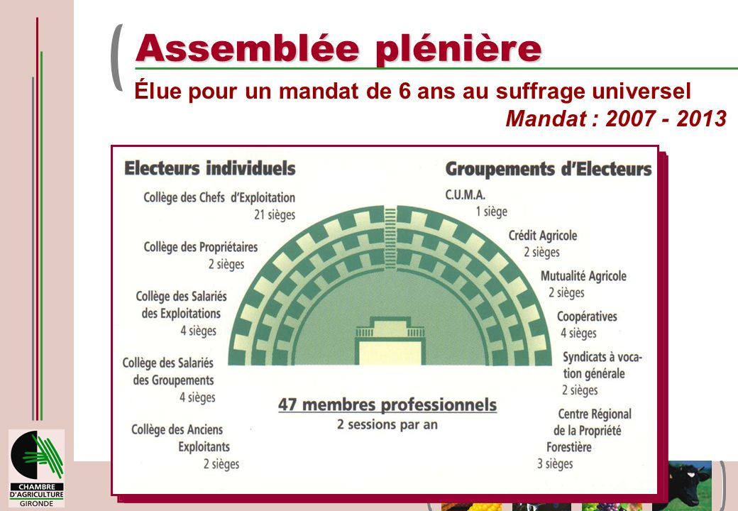 Assemblée plénière Élue pour un mandat de 6 ans au suffrage universel