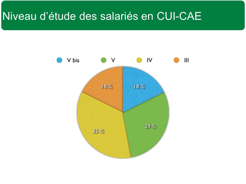 Niveau d'étude des salariés en CUI-CAE