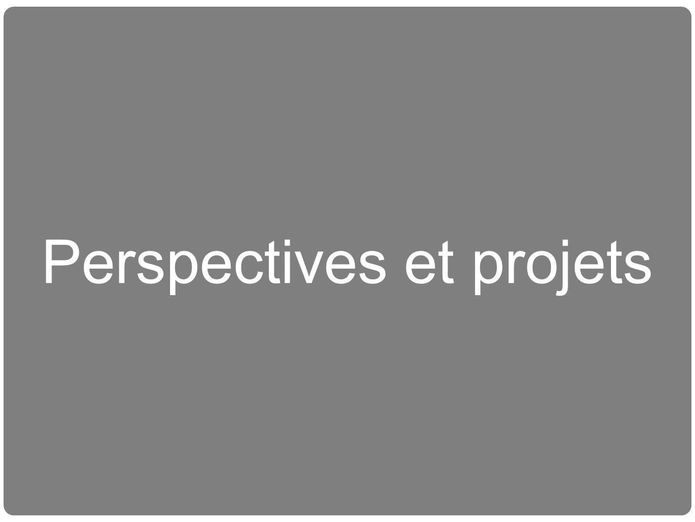 Perspectives et projets