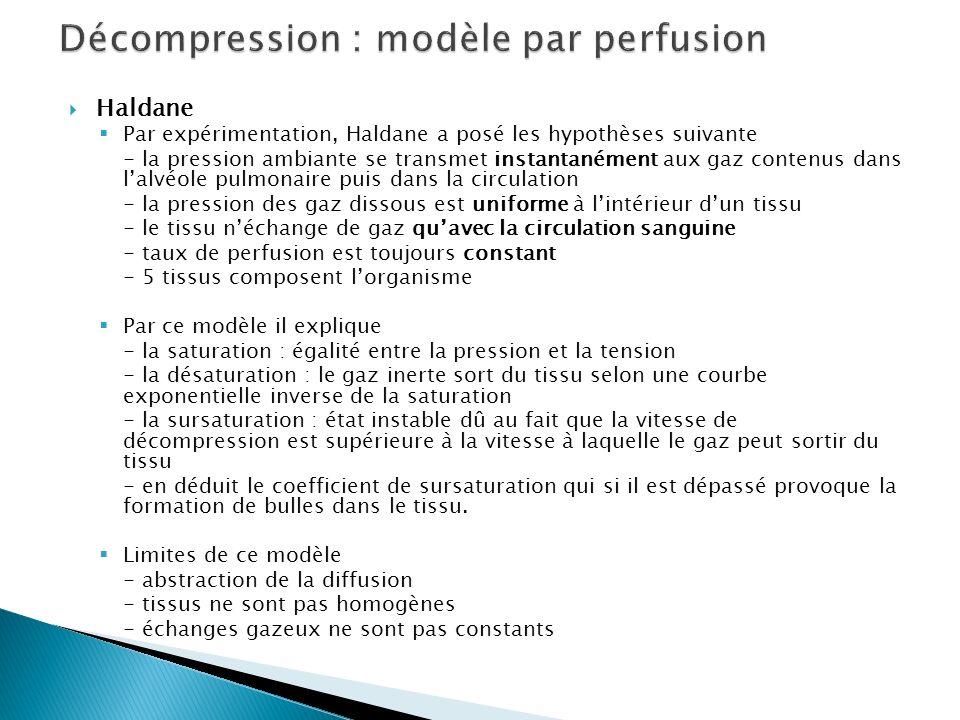 Décompression : modèle par perfusion