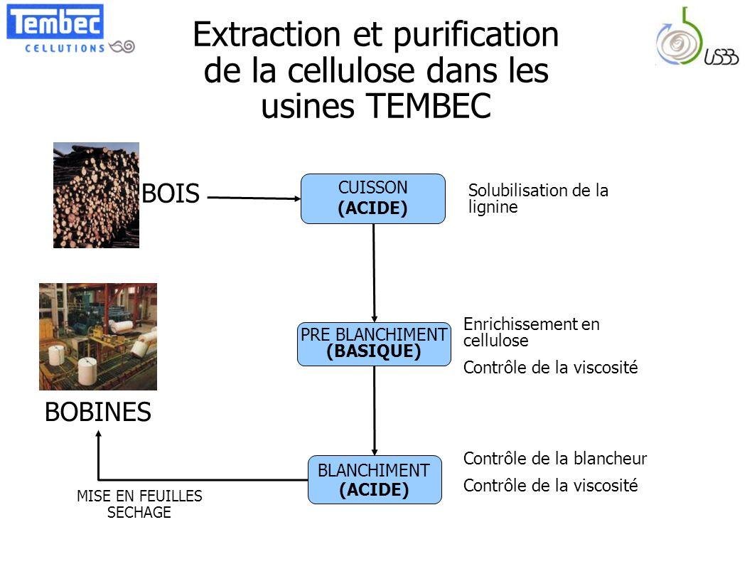 Extraction et purification de la cellulose dans les usines TEMBEC