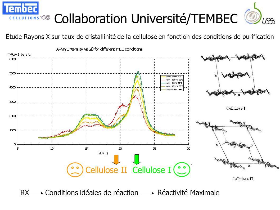 Collaboration Université/TEMBEC