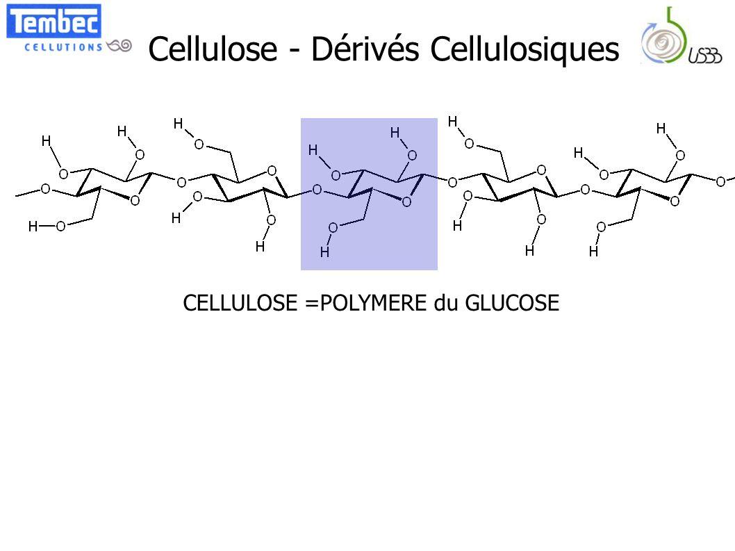 Cellulose - Dérivés Cellulosiques