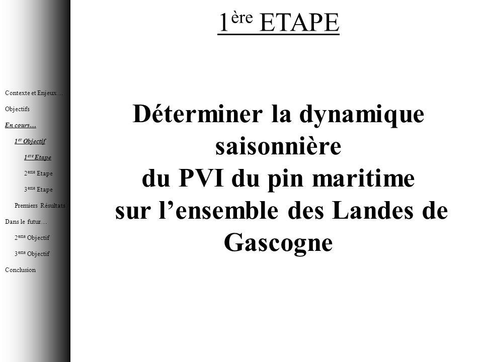 Déterminer la dynamique saisonnière du PVI du pin maritime