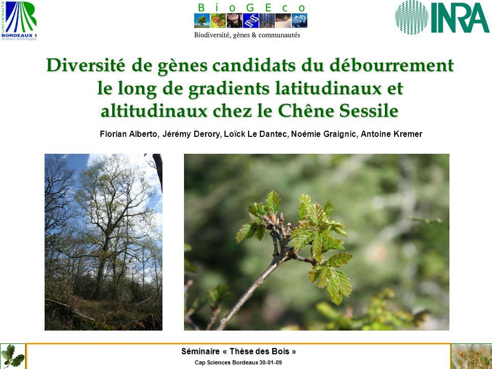 Séminaire « Thèse des Bois » Cap Sciences Bordeaux 30-01-09