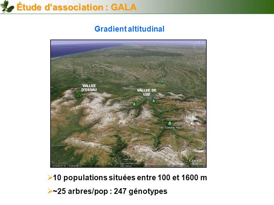 Étude d'association : GALA