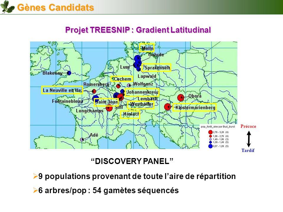 Projet TREESNIP : Gradient Latitudinal
