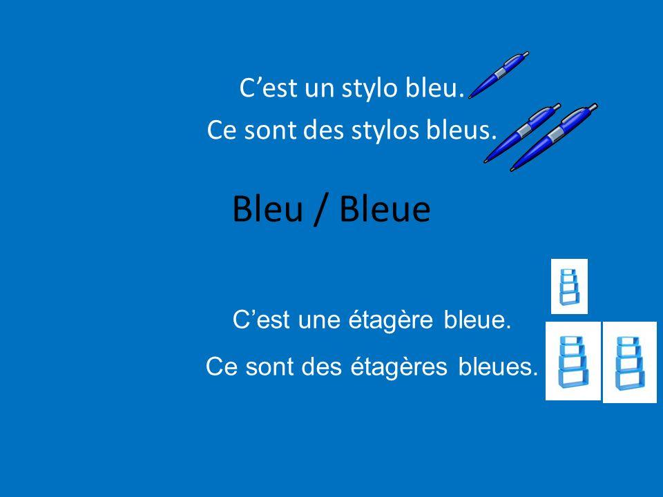 C'est un stylo bleu. Ce sont des stylos bleus.