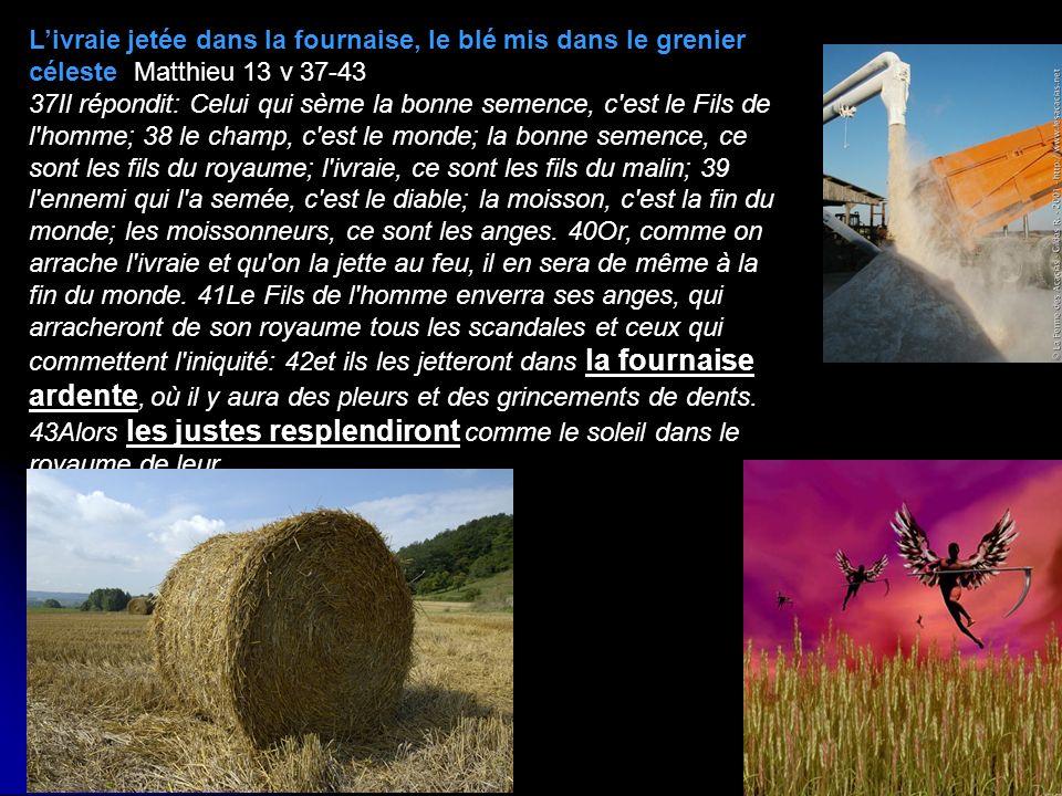 L'ivraie jetée dans la fournaise, le blé mis dans le grenier céleste Matthieu 13 v 37-43