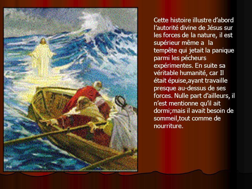 Cette histoire illustre d'abord l'autorité divine de Jésus sur les forces de la nature, il est supérieur même a la tempête qui jetait la panique parmi les pécheurs expérimentes.