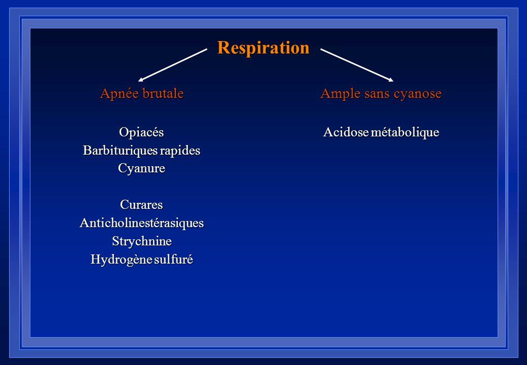 Respiration Apnée brutale Ample sans cyanose Opiacés