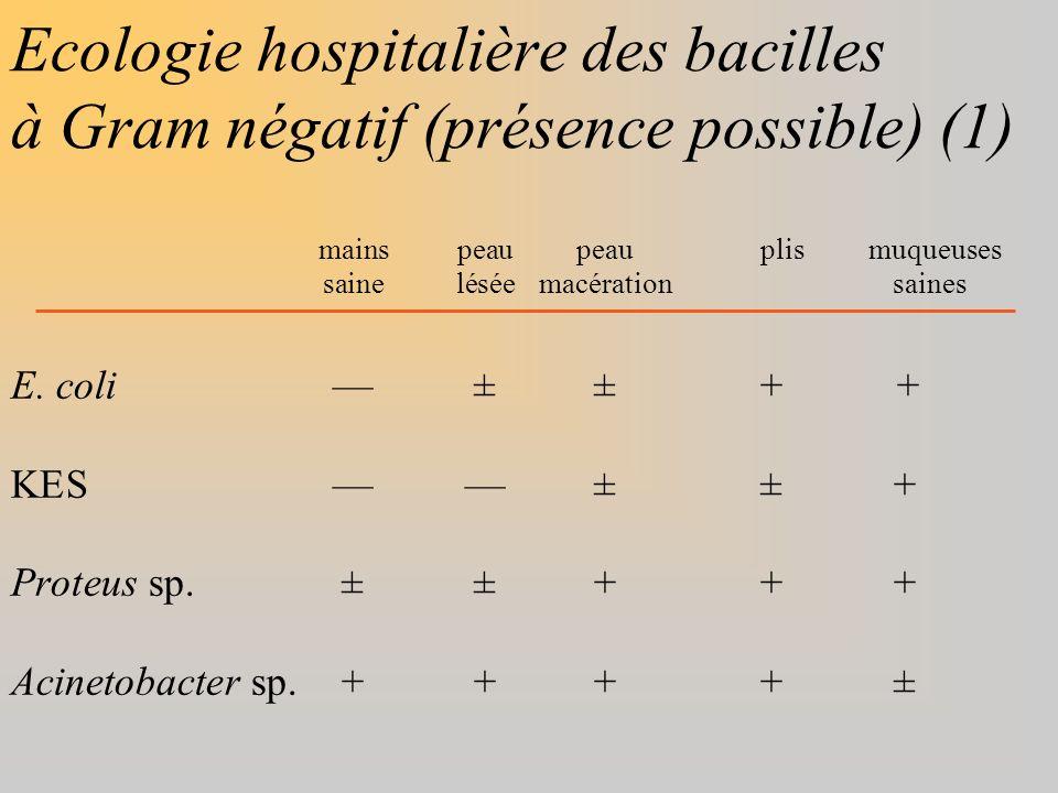 Ecologie hospitalière des bacilles à Gram négatif (présence possible) (1)