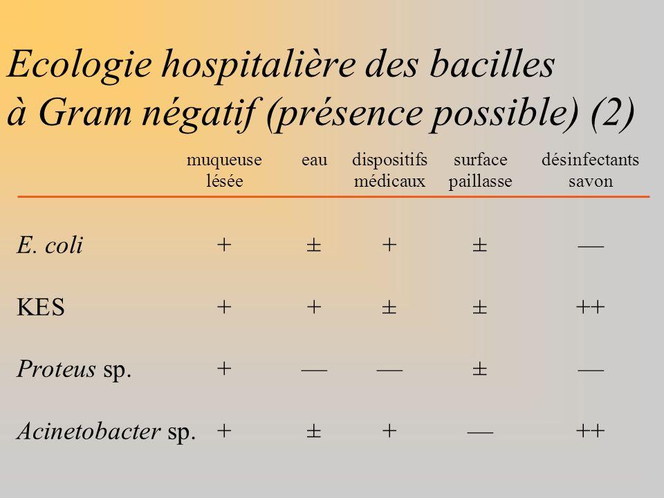 Ecologie hospitalière des bacilles à Gram négatif (présence possible) (2)