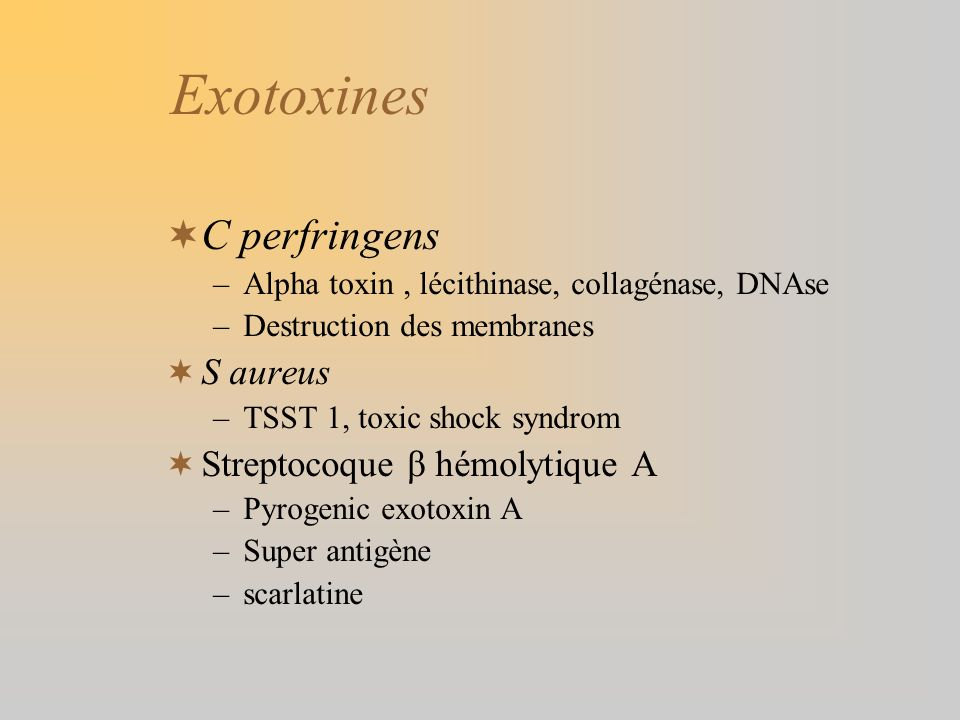 Exotoxines C perfringens S aureus Streptocoque β hémolytique A