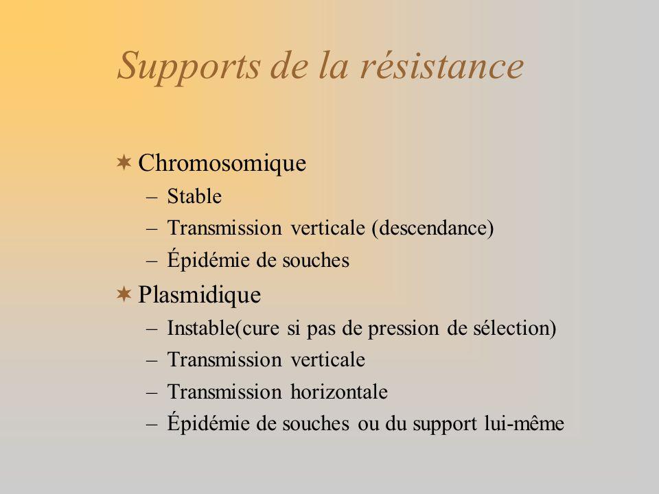 Supports de la résistance