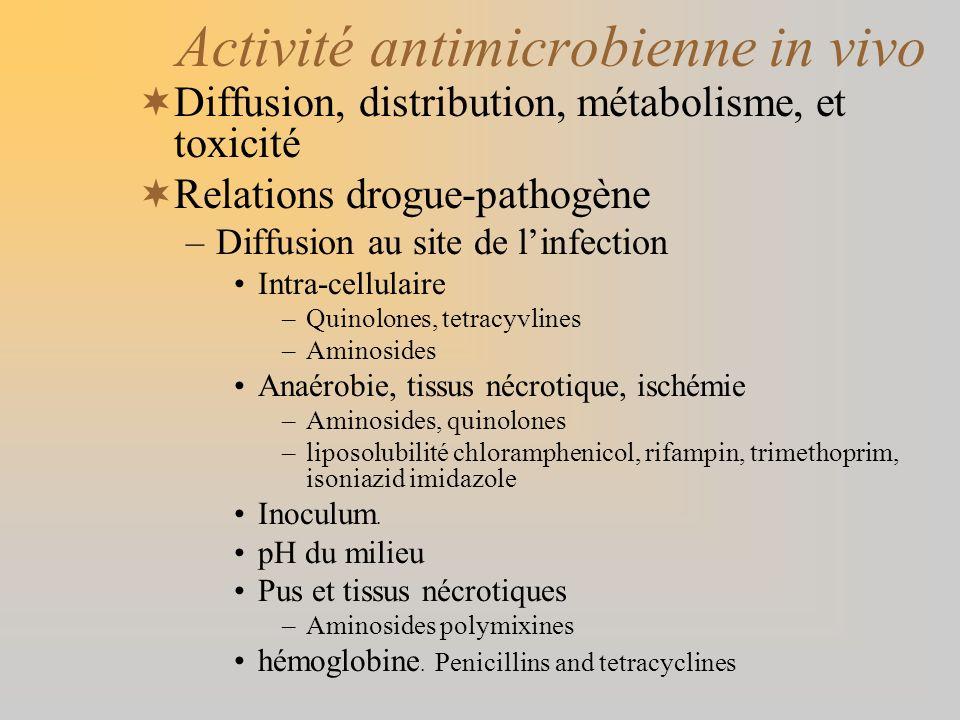 Activité antimicrobienne in vivo