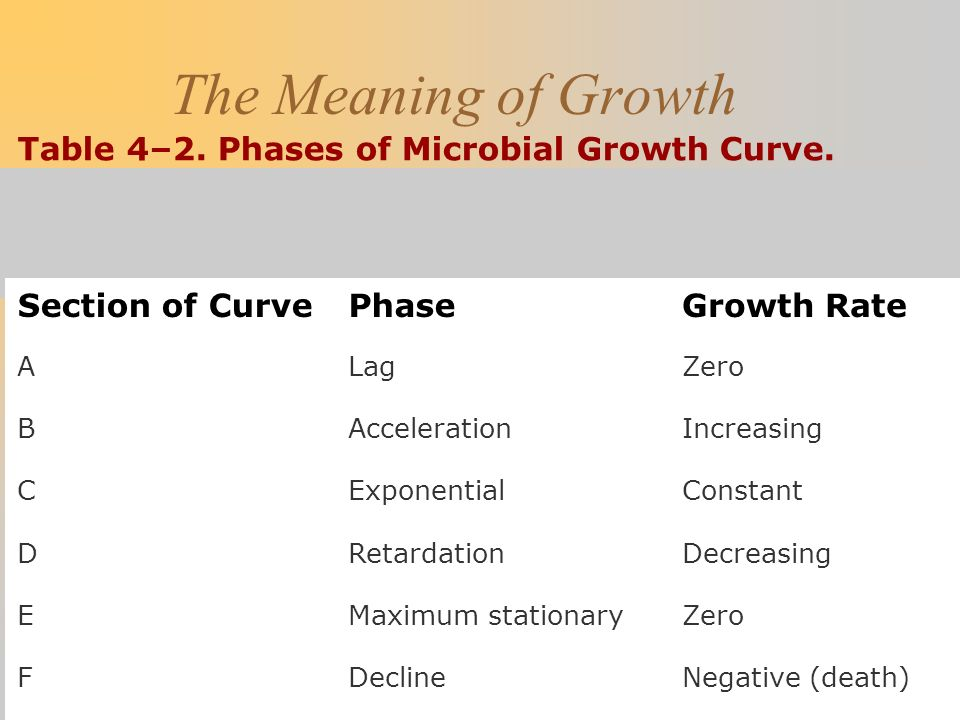 The Meaning of Growth Table 4–2. Phases of Microbial Growth Curve.